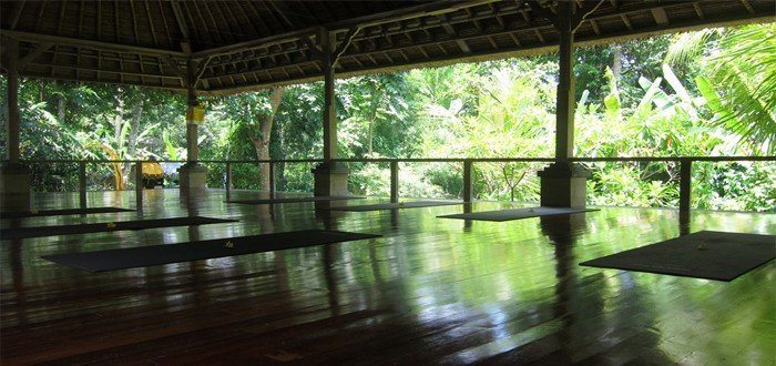 Coconut suites near Ubud for retreats