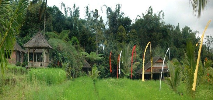 Tabanan Mountain Retreat Center Bali
