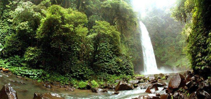 Water Falls in Bali
