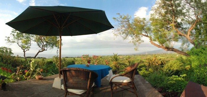 Seaside Wellness Resort - North Bali