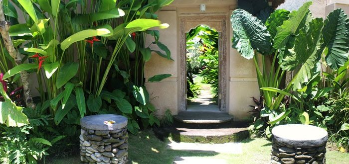 Sawah Resort Ubud for Wellness Retreats