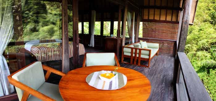 Mountain Wellness Resort near Ubud